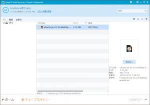 EaseUS Data Recovery Wizard Professional - クイックスキャンが完了しました(大きなファイル)